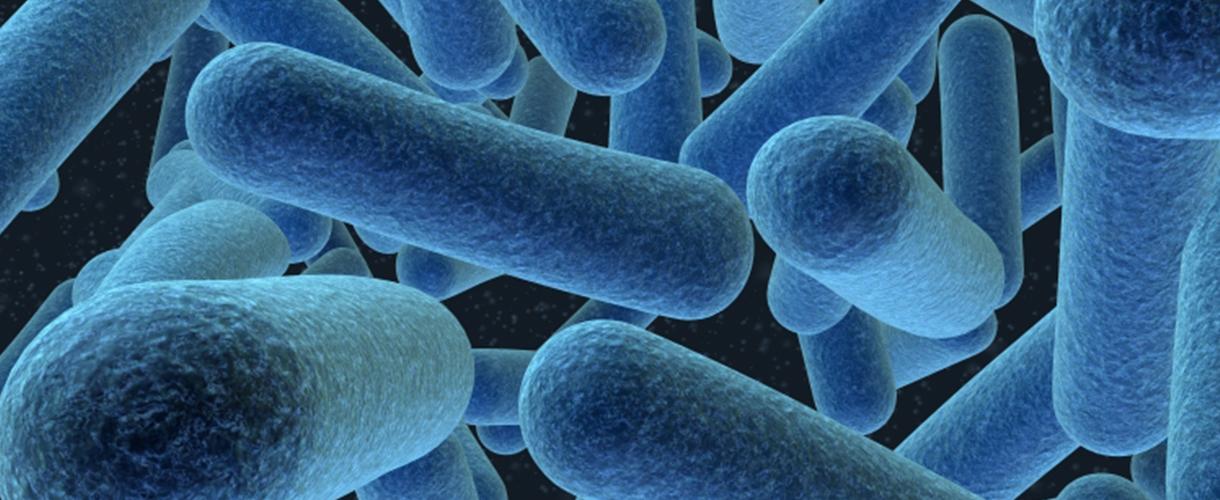Legionella Temperature Control